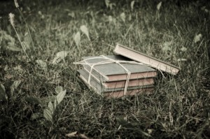 books-in-the-grass-1409233244tHw